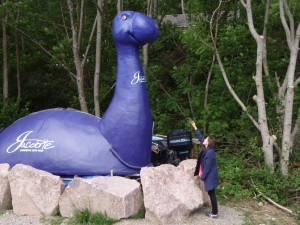 Making friends with 'Nessie'