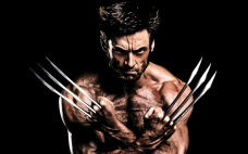 What I thought was 'The Wolverine'